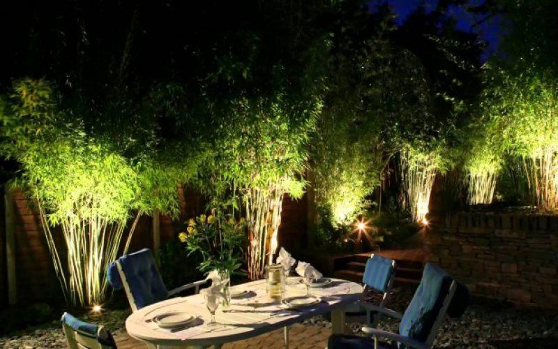 Lampu Sorot Pohon Yang Hemat Dan Tahan Lama