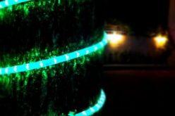 Harga Lampu Hias Lilit Pohon