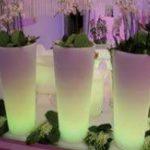 Lampu Hias LED Pot bunga ES-F4090 Ø40X40xH90cm