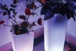 Lampu Hias Kafe Restaurant Berkualitas Di Jakarta