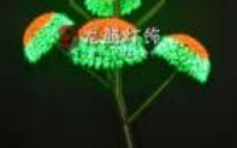 Jual Lampu Pohon Led Untuk Keindahan Yang Maksimal