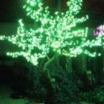 Lampu Hias Pohon YHG1008