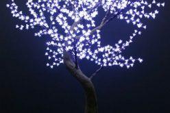 Produk Lampu Hias Pohon